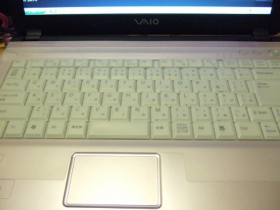vaio typeF light
